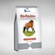 پروبیوتیک دام و طیور- پروبیوتیک اسب